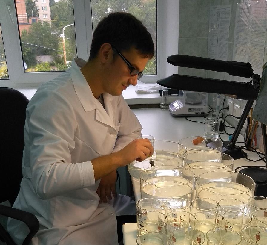 Результаты тестов в пределах нормы: гидробиологи так и не выяснили, почему гибнет рыба в Волге | CityTraffic