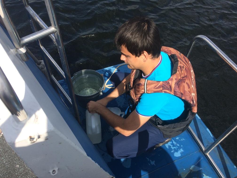 Специалисты гидрометеорологической обсерватории пытаются выяснить, от чего массово гибнет рыба в акватории возле Тольятти | CityTraffic