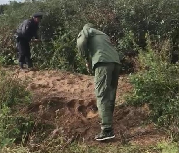 В Башкирии 28-летняя женщина убила своего годовалого сына, а затем заявила в полицию о пропаже ребенка | CityTraffic