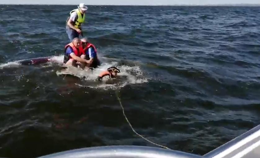 В Самарской области спасли 5мужчин, парусная лодка которых перевернулась