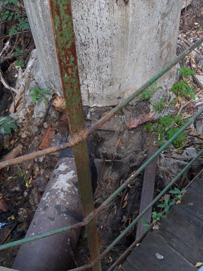 Горожане утверждают, что в Ботаническом саду Самары фекалии из канализации текут в овраг, а потом в Волгу | CityTraffic