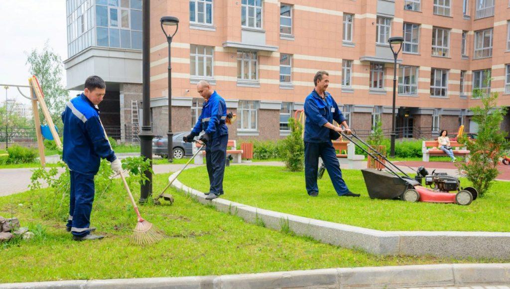 Социальные объекты, ларьки и предприятия Самары обяжут содержать городские территории | CityTraffic