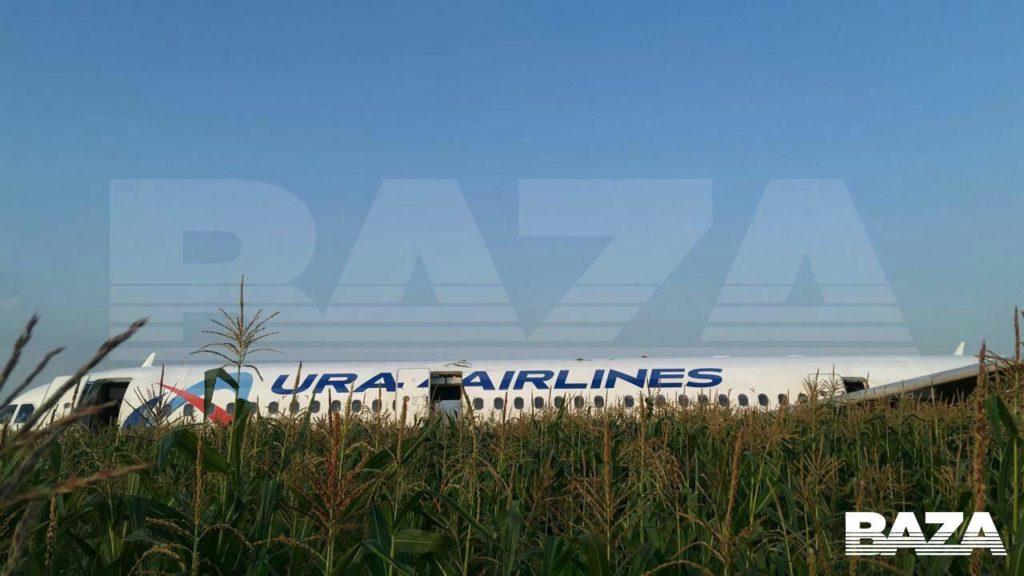 Птицы попали в двигатель самолета с 226 пассажирами на борту, и ему пришлось экстренно сесть в чистом поле под Москвой: видео   CityTraffic