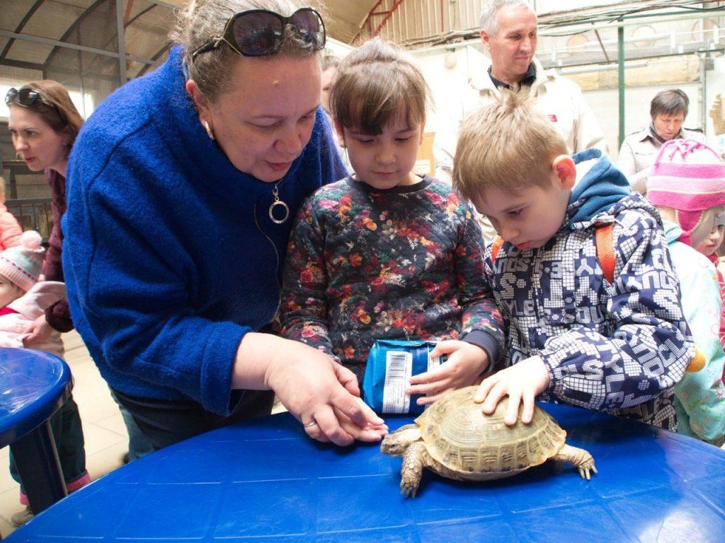 В Самаре школьников познакомят с животными из зоопарка и разрешат их погладить | CityTraffic