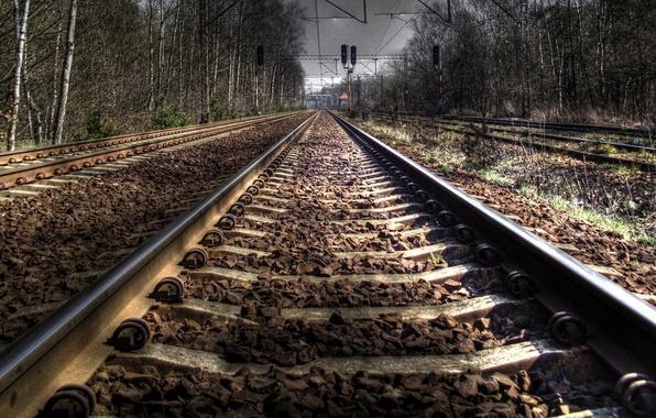 Житель Самарской области погиб под колесами грузового поезда | CityTraffic