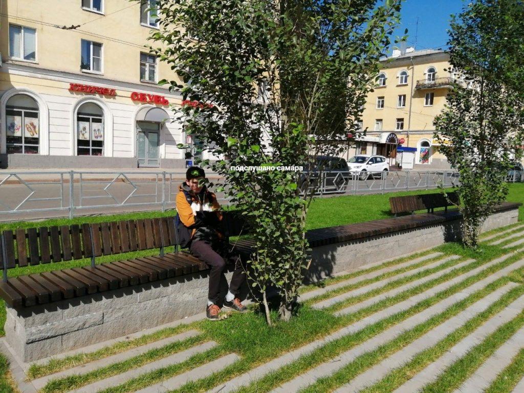 Жители Самары недовольны, что на бульваре Металлургов деревья посадили практически на скамейки | CityTraffic
