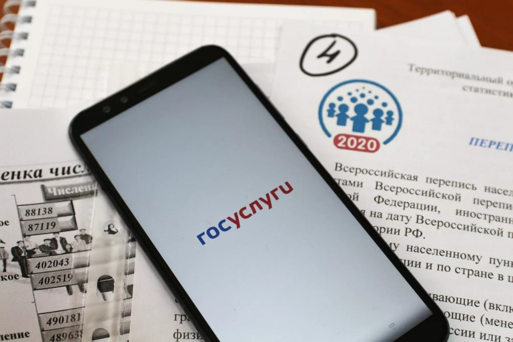 В Самарской области проведут перепись населения через Госуслуги | CityTraffic
