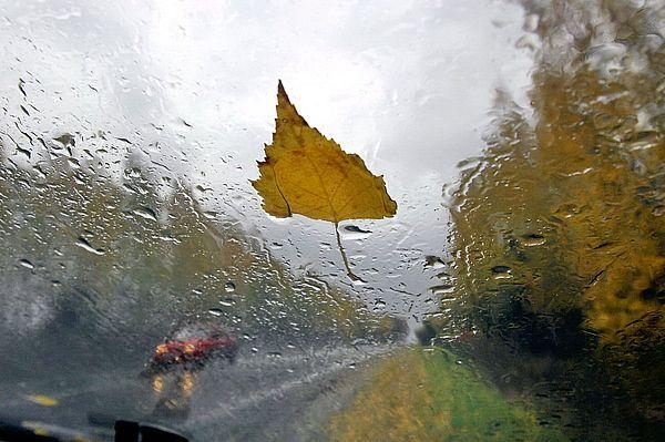 Дожди в Самарской области продержатся как минимум до среды | CityTraffic