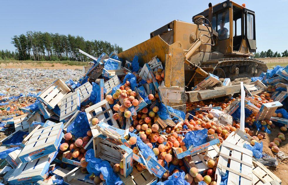 В России конфискованные контрафактные товары будут уничтожать в ускоренном порядке | CityTraffic