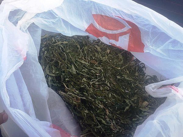 У жителя Самарской области изъяли больше полкило марихуаны | CityTraffic