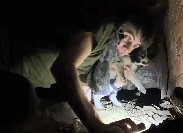 Дигер из районной администрации спас шестерых щенков из-под завалов: видео | CityTraffic