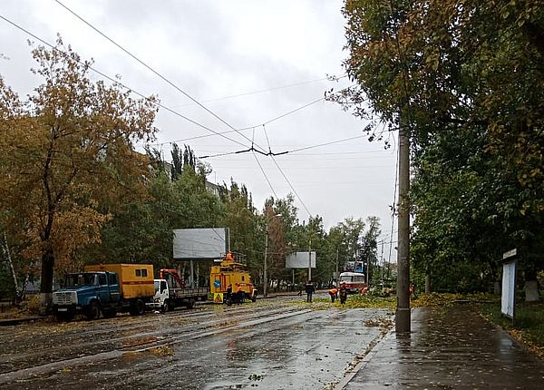 В Самаре из-за упавших деревьев перекрыли дороги | CityTraffic