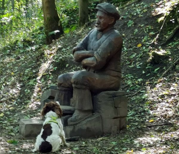Пес принял деревянную статую впарке за человека иумолял его поиграть сним: видео