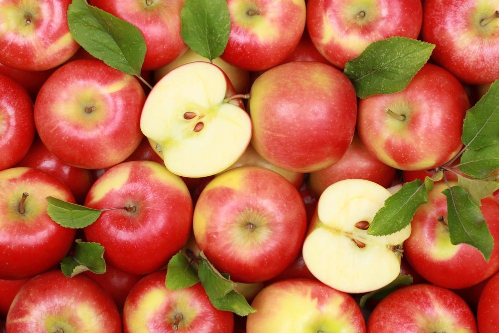 В Самару из Таджикистана пытались провезти партию яблок с паразитами | CityTraffic