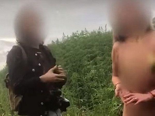 Фермер нашел на своем конопляном поле голую женщину: видео | CityTraffic