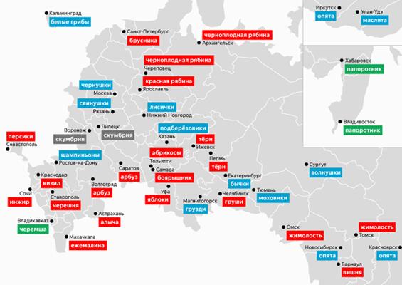 Боярышник и абрикосы: аналитики выяснили, что жители Самары, Тольятти и других городов РФ заготавливают на зиму | CityTraffic