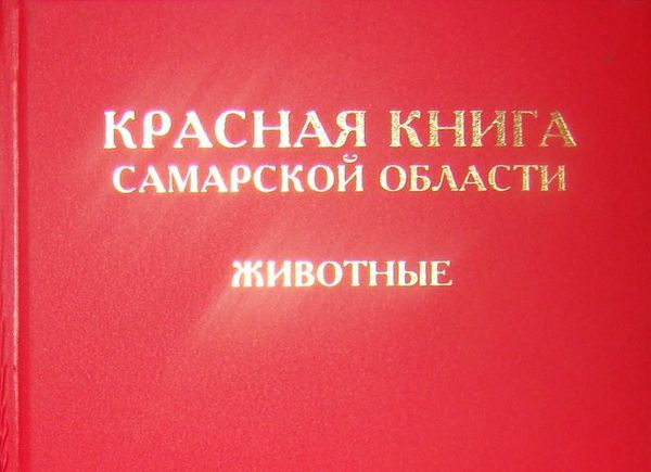На ведение Красной Книги Самарской области выделили 489 тысяч рублей | CityTraffic
