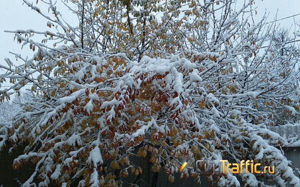 В Самарской области такого снегопада 31 декабря не было 37 лет | CityTraffic