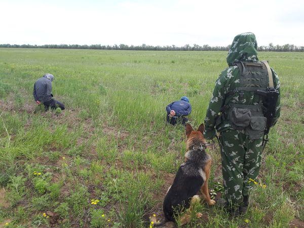 Двое выходцев из Средней Азии получили год в колонии общего режима за миграцию в Самарскую область | CityTraffic