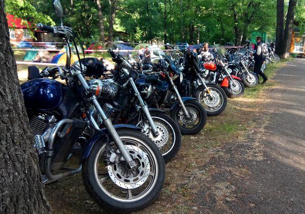Шашлык, чай и разные напитки: мотоциклисты Самары закрывают сезон | CityTraffic
