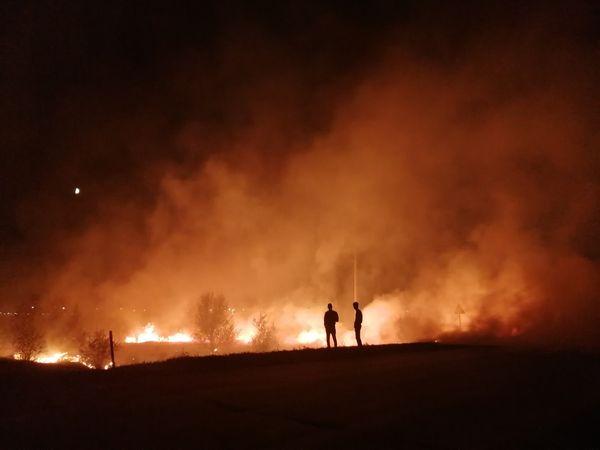 В Самарской области продолжаются лесные пожары: видео | CityTraffic
