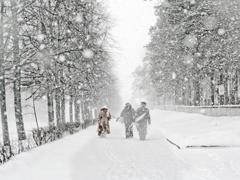 В Тольятти ожидается усиление ветра и метель | CityTraffic
