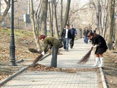 Около 42,5 тысяч тольяттинцев приняли участие вобщегородском субботнике