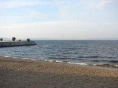 Качество воды в Волге близ Тольятти остается в пределах нормы | CityTraffic