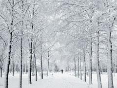 В Тольятти ожидается усиление морозов