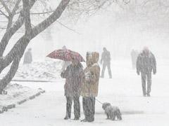 В Тольятти сохраняются неблагоприятные погодные условия | CityTraffic