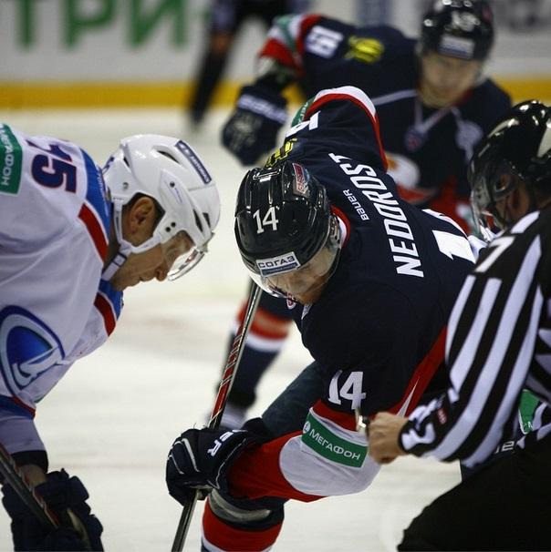 Сборная России по гандболу получила соперника по отбору на ЧМ-2015 | CityTraffic