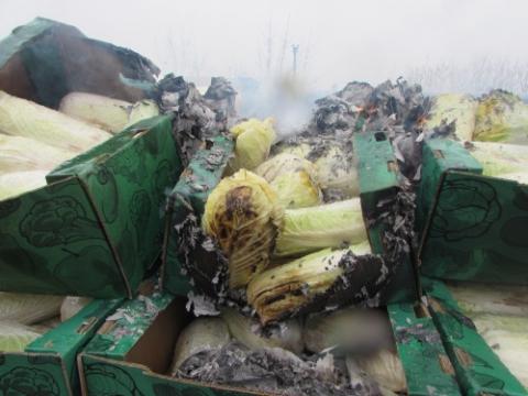 Правительство рассказало, как нужно поступать сзапрещенной кввозу продукцией при ее выявлении