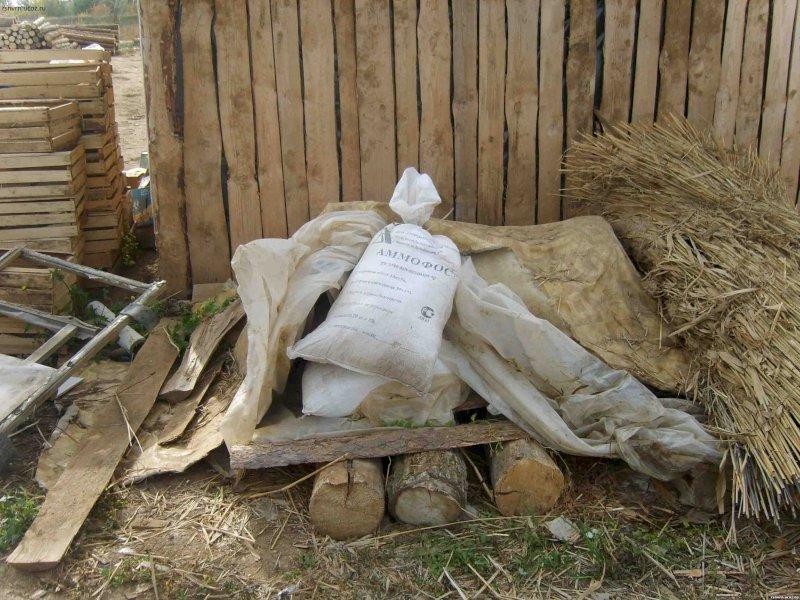 В Самарской области обнаружено 340 тонн опасных пестицидов, выброшенных еще всоветские времена