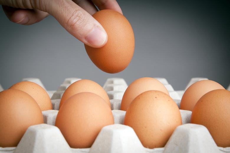 В Самарской области подешевели яйца, куры ирыба