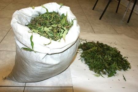 Под Тольятти задержали двоих молодых мужчин с3 килограммами конопли