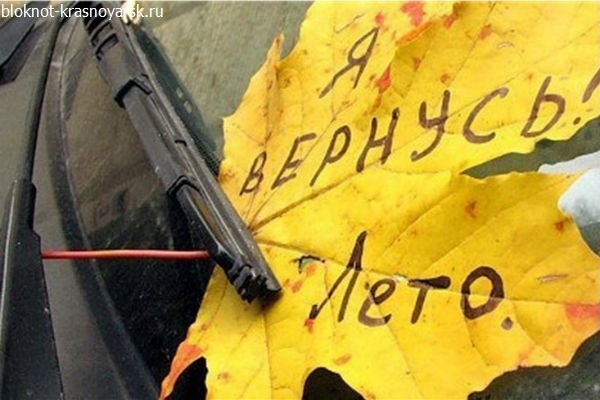Скорая помощь Тольятти принимала роды у горожанки по телефону | CityTraffic