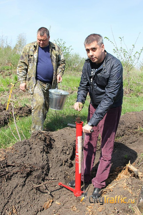 В Тольятти освоили новый способ посадки деревьев | CityTraffic