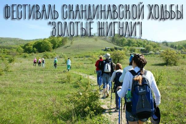В Самарской области пройдет фестиваль по скандинавской ходьбе | CityTraffic