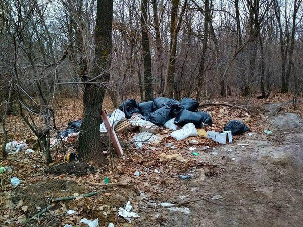 Тольяттинцы нашли горы мусора на въезде влес
