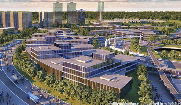 "На ""Форуме Действий"" ОНФ будет представлен доклад о развитии туризма на территории Самарской области | CityTraffic"