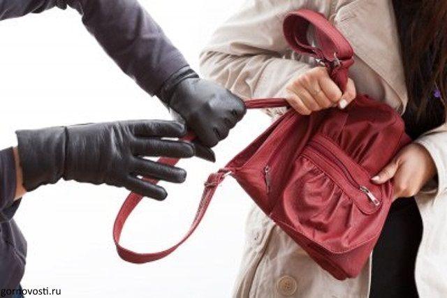Жительницу Самарской области ограбил мужчина, который помог донести ей тяжелые пакеты до дома