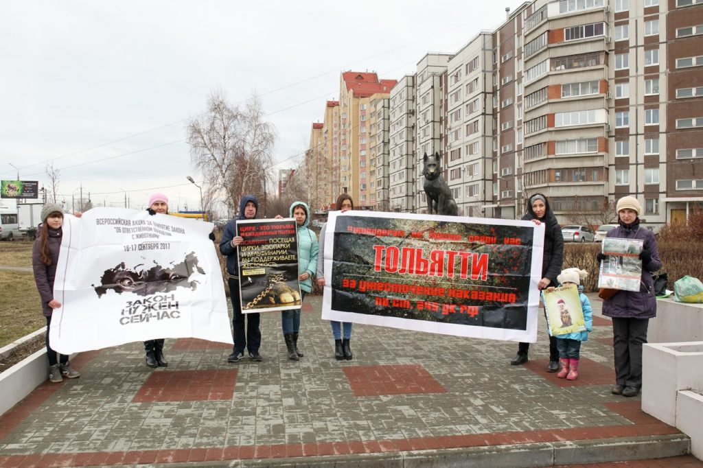 В Тольятти приостановлена работа одного из дачных маршрутов из-за опасности для жизни пассажиров | CityTraffic