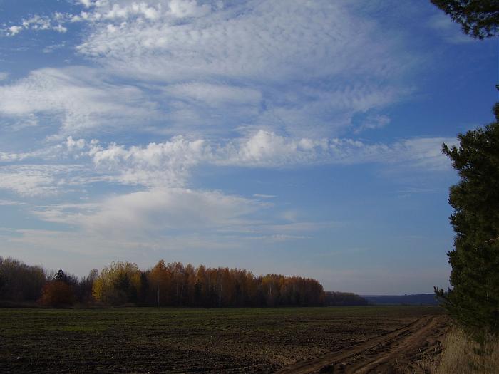 В селе Самарской области памятник природы забыли внести вгенплан
