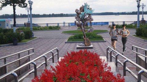 """В Самаре во время празднования Дня города откроют скульптуру """"Клен"""" под звуки одноименной песни """"Синей Птицы"""""""