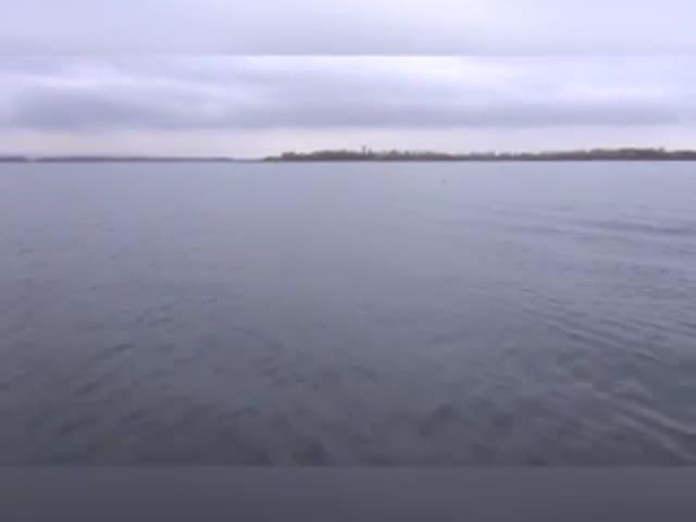 В Самарской области удвух братьев-браконьеров изъяли 4,5 тонн рыбы: видео