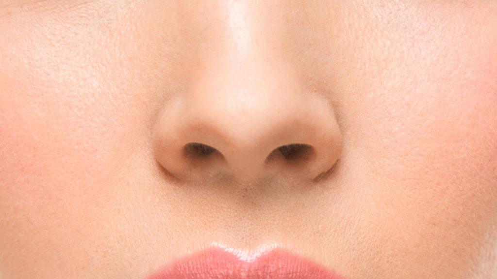 Нос человека фото для детей