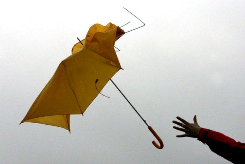 В Самарской области ожидается штормовой ветер | CityTraffic