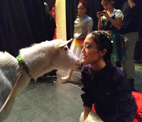 Коза-оракул Забияка снова вышла на сцену Самарского академического театра оперы и балета | CityTraffic