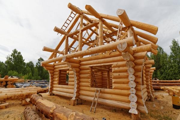 В Жигулевском заповеднике за 1,8 миллиона рублей планируют построить срубовый визит-центр   CityTraffic