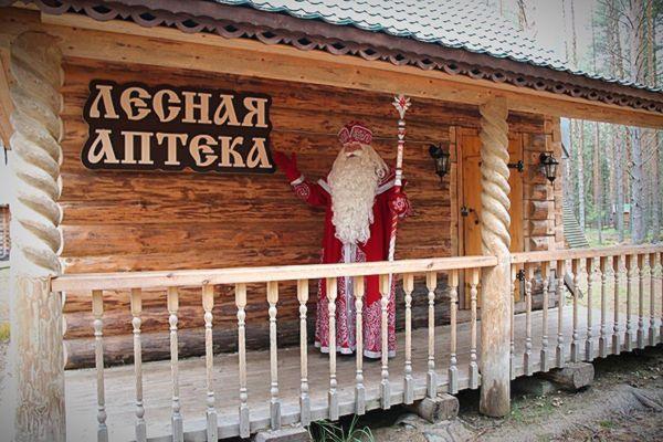 Дед Мороз посетит Самару в ходе своего новогоднего путешествия по 50 городам России | CityTraffic